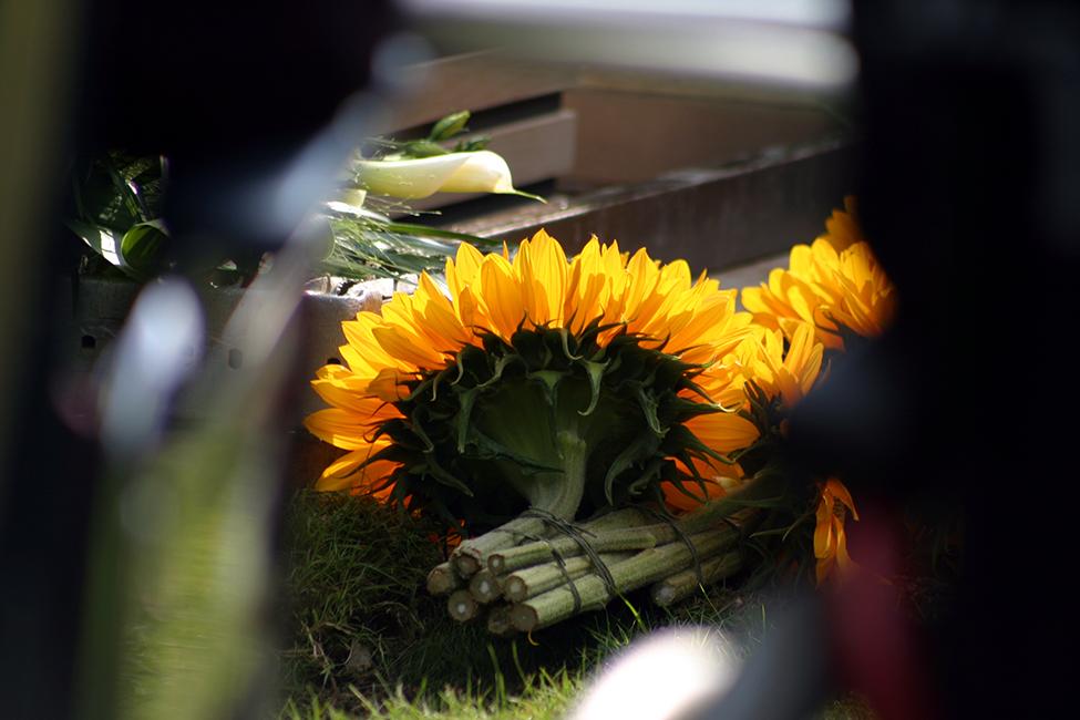 Jikke Uitvaartfotografie zonnebloemen